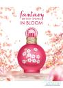 Britney Spears Fantasy in Bloom EDP 100ml за Жени Дамски Парфюми
