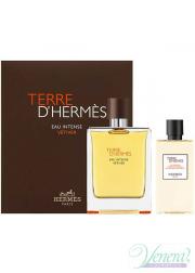 Hermes Terre D'Hermes Eau Intense Vetiver Set (EDP 100ml + SG 80ml) για άνδρες Ανδρικά Σετ