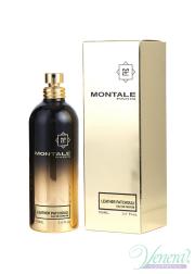 Montale Leather Patchouli EDP 100ml για άνδρες και Γυναικες Unisex Fragrances