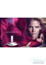 Calvin Klein Euphoria Комплект (EDP 50ml + Body Lotion 100ml) за Жени Дамски Комплекти