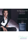 Davidoff Silver Shadow Private EDT 100ml за Мъже