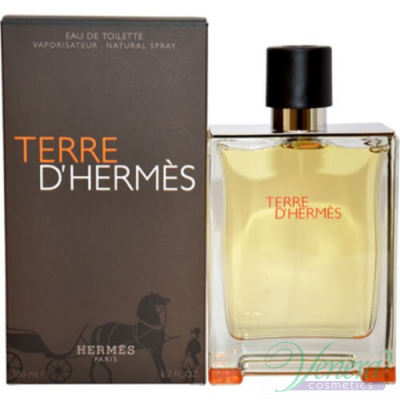Hermes Terre D'Hermes EDT 100ml for Men Men's Fragrance